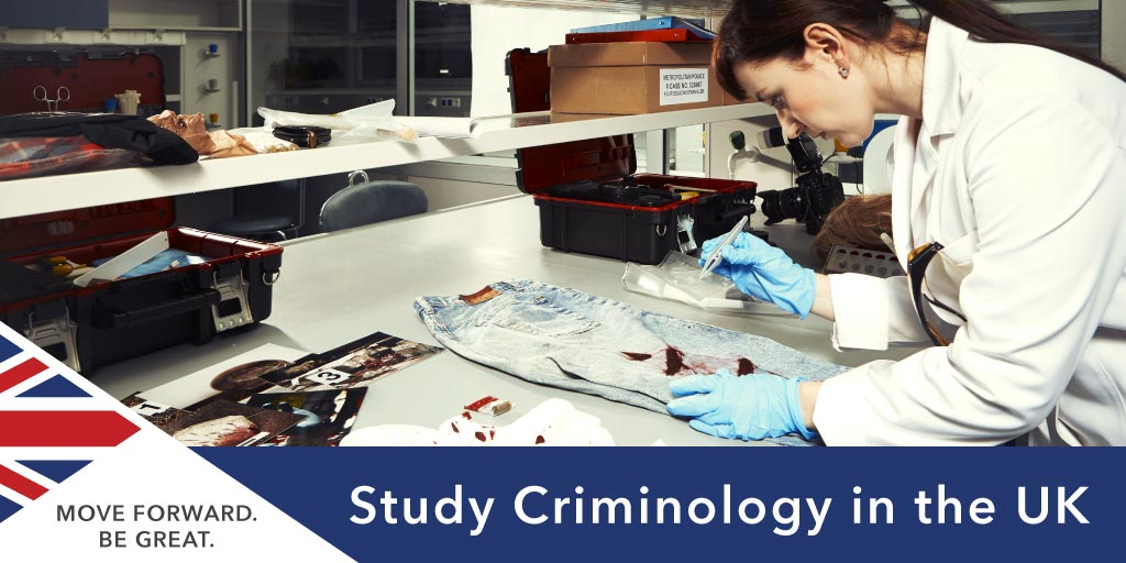 Study  Criminology in the UK