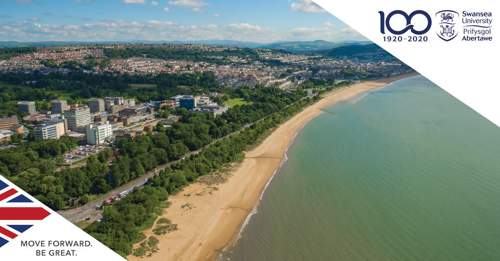Swansea University Sociology